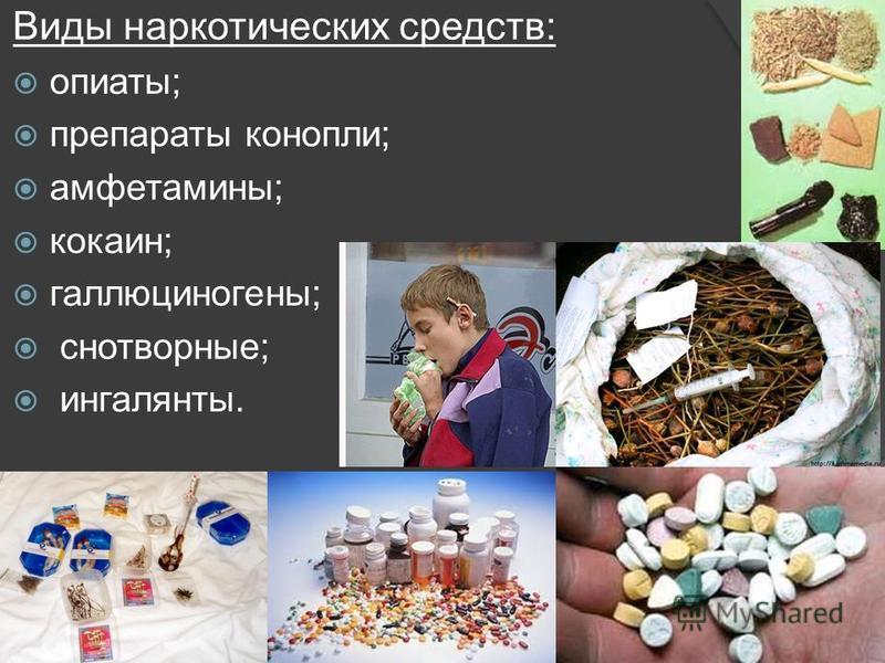 Виды наркотических средств: опиаты; препараты конопли; амфетамины; кокаин; галлюциногены; снотворные; ингалянты.