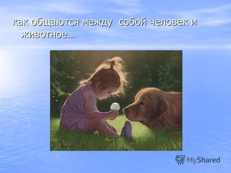 как общаются между собой человек и животное…