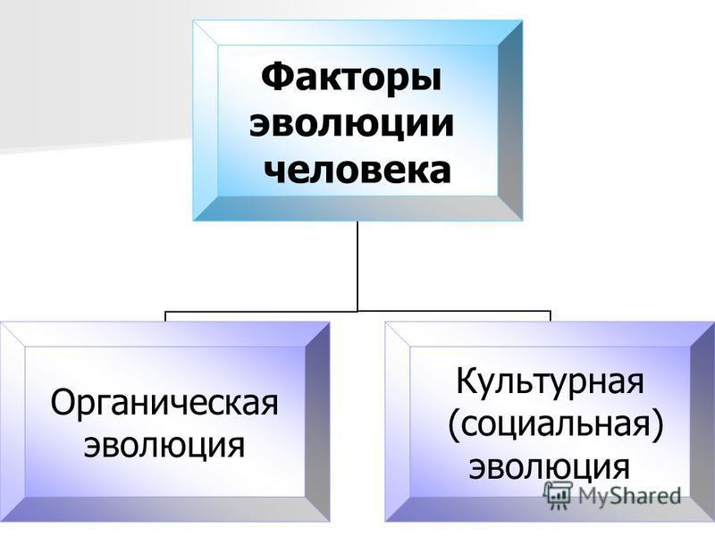 Факторы эволюции человека Органическая эволюция Культурная (социальная) эволюция