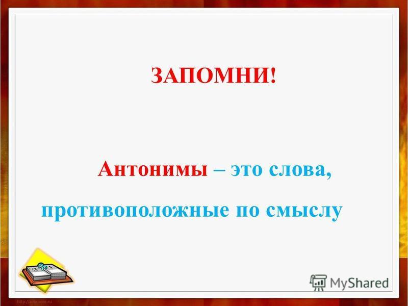 ЗАПОМНИ! Антонимы – это слова, противоположные по смыслу