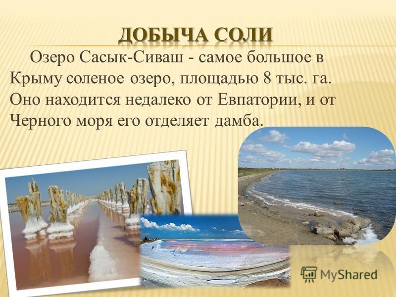 Озеро Сасык-Сиваш - самое большое в Крыму соленое озеро, площадью 8 тыс. га. Оно находится недалеко от Евпатории, и от Черного моря его отделяет дамба.