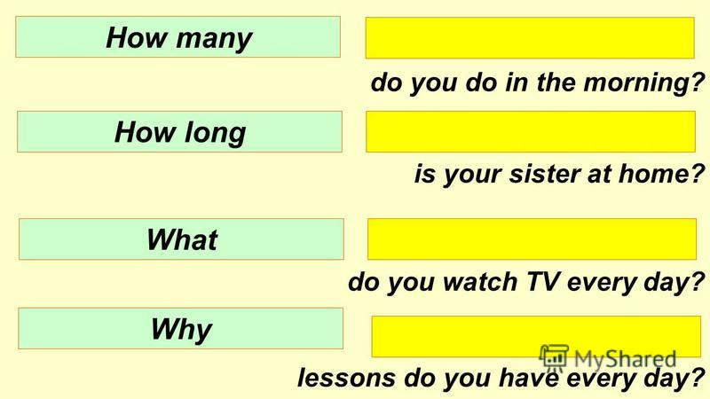 do you do in the morning? is your sister at home? do you watch TV every day? lessons do you have every day? How many How long What Why