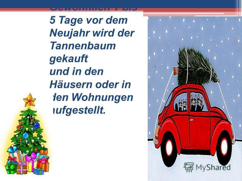 Gewöhnlich 1 bis 5 Tage vor dem Neujahr wird der Tannenbaum gekauft und in den Häusern oder in den Wohnungen aufgestellt.