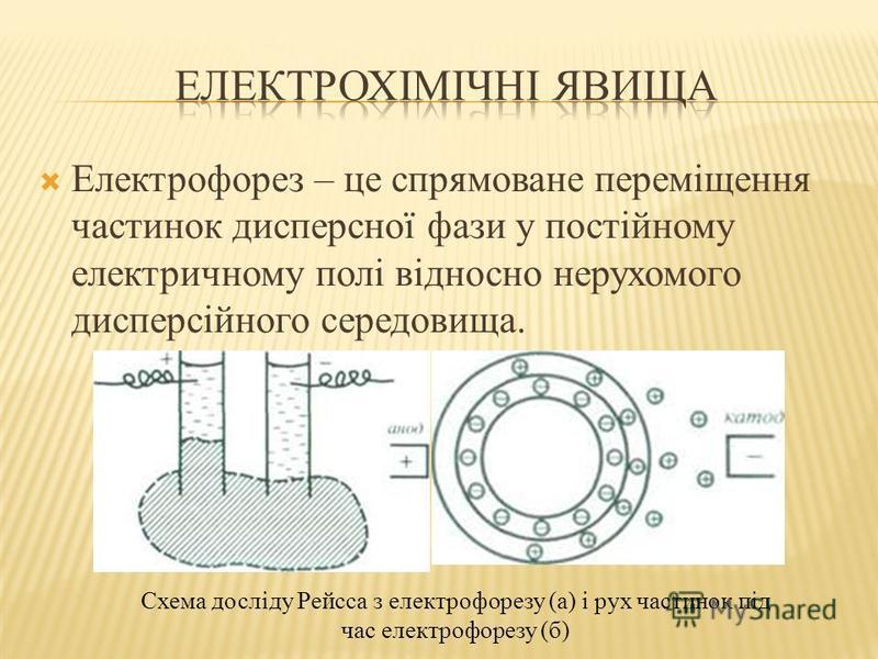Електрофорез – це спрямоване переміщення частинок дисперсної фази у постійному електричному полі відносно нерухомого дисперсійного середовища. Схема досліду Рейсса з електрофорезу (а) і рух частинок під час електрофорезу (б)