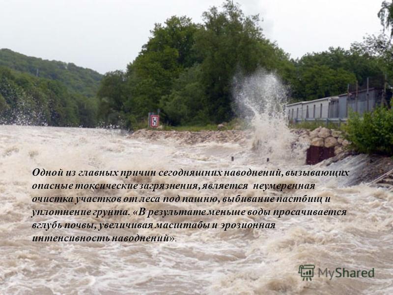 Одной из главных причин сегодняшних наводнений, вызывающих опасные токсические загрязнения, является неумеренная очистка участков от леса под пашню, выбивание пастбищ и уплотнение грунта. «В результате меньше воды просачивается вглубь почвы, увеличив