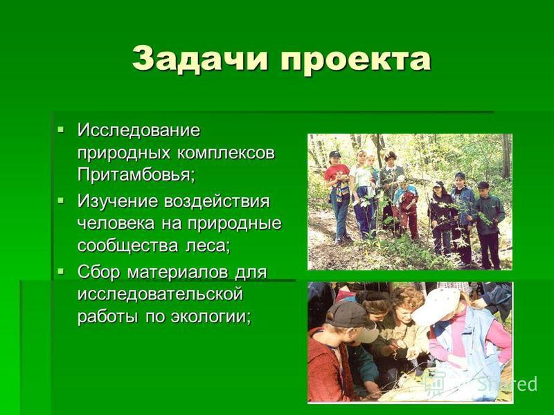 Задачи проекта Исследование природных комплексов Притамбовья; Исследование природных комплексов Притамбовья; Изучение воздействия человека на природные сообщества леса; Изучение воздействия человека на природные сообщества леса; Сбор материалов для и