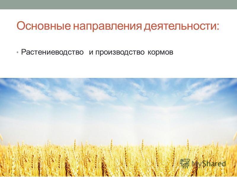 Основные направления деятельности: Растениеводство и производство кормов