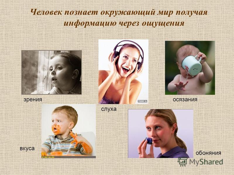 Человек позналет окружающий мир получая информацию через ощущения зрения слуха осязания обоняния вкуса