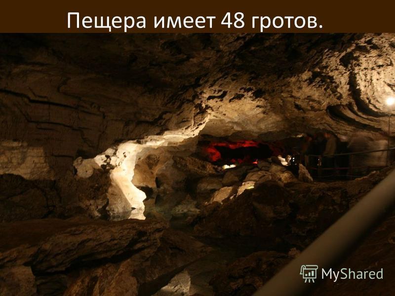 Пещера имеет 48 гротов.