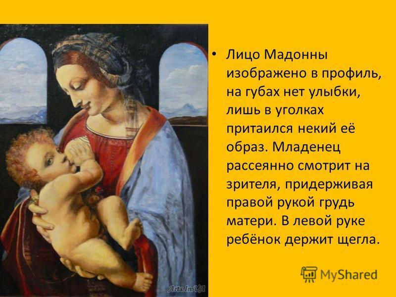 Лицо Мадонны изображено в профиль, на губах нет улыбки, лишь в уголках притаился некий её образ. Младенец рассеянно смотрит на зрителя, придерживая правой рукой грудь матери. В левой руке ребёнок держит щегла.