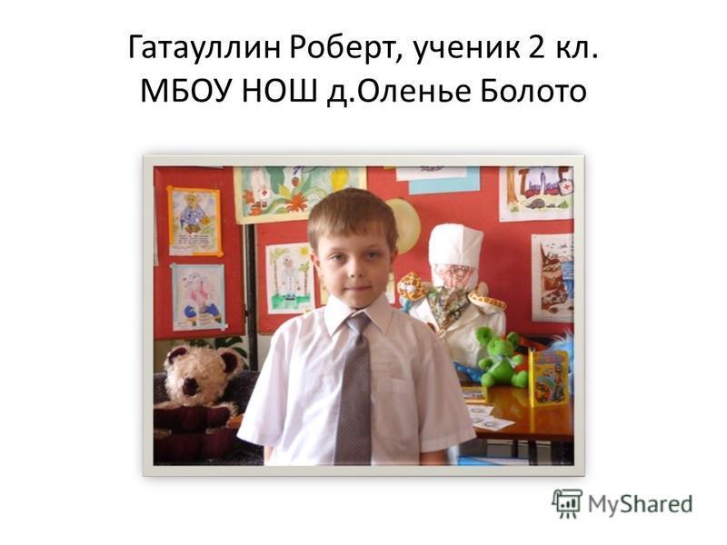 Гатауллин Роберт, ученик 2 кл. МБОУ НОШ д.Оленье Болото