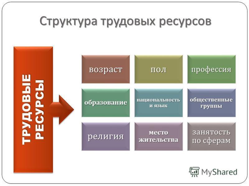 Структура трудовых ресурсов ТРУДОВЫЕРЕСУРСЫТРУДОВЫЕРЕСУРСЫ