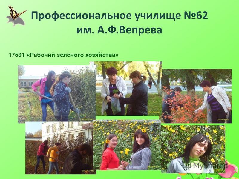 Профессиональное училище 62 им. А.Ф.Вепрева 17531 «Рабочий зелёного хозяйства»