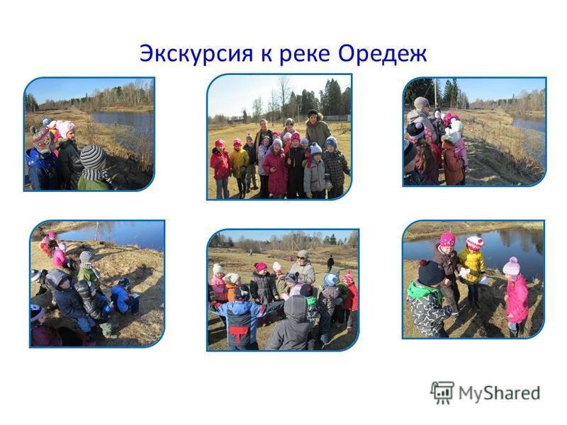 Экскурсия к реке Оредеж
