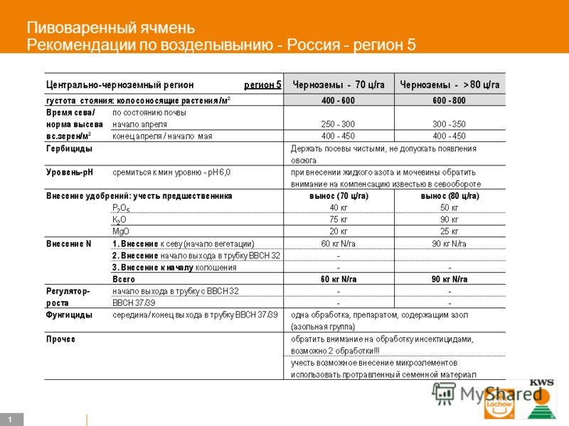 1 KWS UK-LT/HO Пивоваренный ячмень Рекомендации по возделывынию - Россия - регион 5