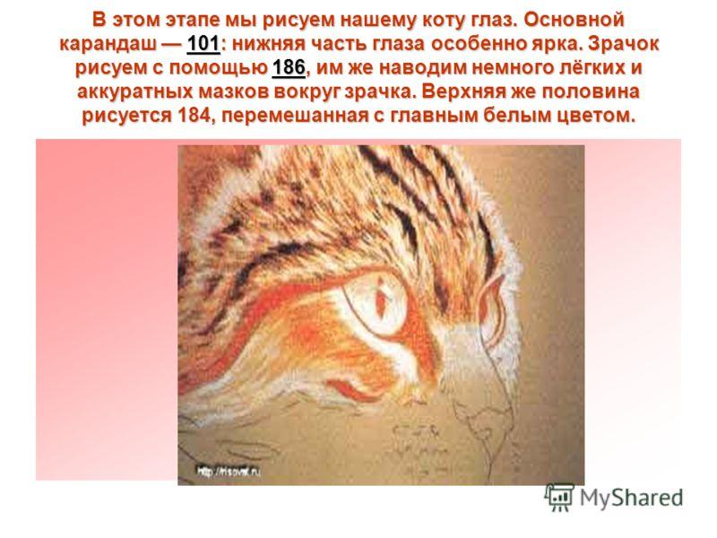 В этом этапе мы рисуем нашему коту глаз. Основной карандаш 101: нижняя часть глаза особенно ярка. Зрачок рисуем с помощью 186, им же наводим немного лёгких и аккуратных мазков вокруг зрачка. Верхняя же половина рисуется 184, перемешанная с главным бе