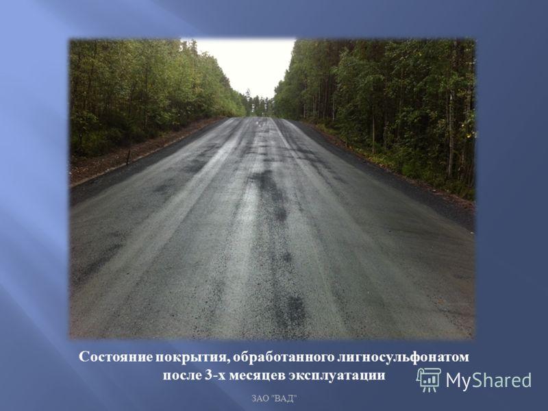 ЗАО  ВАД  Состояние покрытия, обработанного лигносульфонатом после 3- х месяцев эксплуатации
