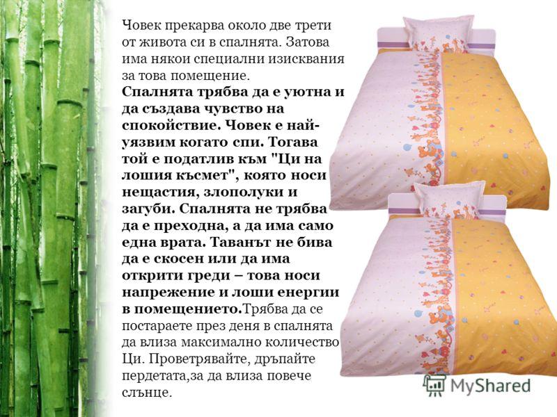 Човек прекарва около две трети от живота си в спалнята. Затова има някои специални изисквания за това помещение. Спалнята трябва да е уютна и да създава чувство на спокойствие. Човек е най- уязвим когато спи. Тогава той е податлив към