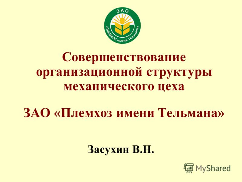 Засухин В.Н. Совершенствование организационной структуры механического цеха ЗАО «Племхоз имени Тельмана»