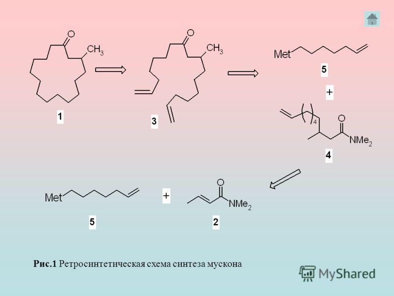 Рис.1 Ретросинтетическая схема синтеза мускона