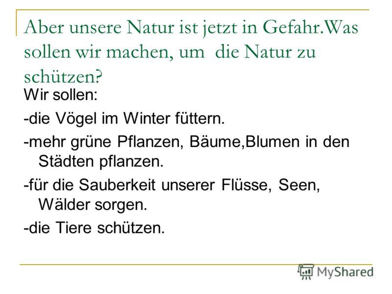 Aber unsere Natur ist jetzt in Gefahr.Was sollen wir machen, um die Natur zu schützen? Wir sollen: -die Vögel im Winter füttern. -mehr grüne Pflanzen, Bäume,Blumen in den Städten pflanzen. -für die Sauberkeit unserer Flüsse, Seen, Wälder sorgen. -die
