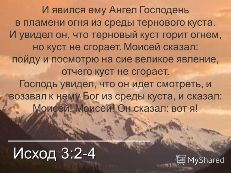 Исход 3:2-4 И явился ему Ангел Господень в пламени огня из среды тернового куста. И увидел он, что терновый куст горит огнем, но куст не сгорает. Моисей сказал: пойду и посмотрю на сие великое явление, отчего куст не сгорает. Господь увидел, что он и