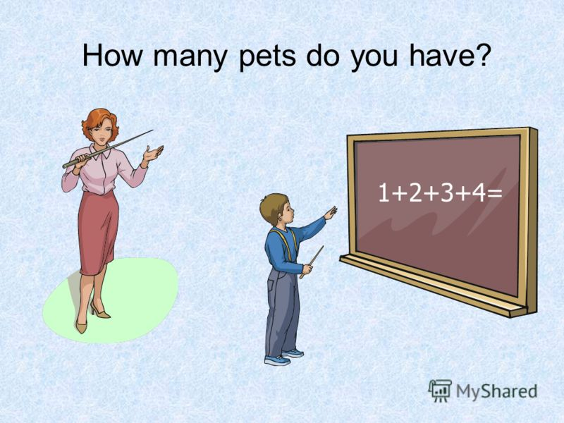 How many pets do you have? 1+2+3+4=