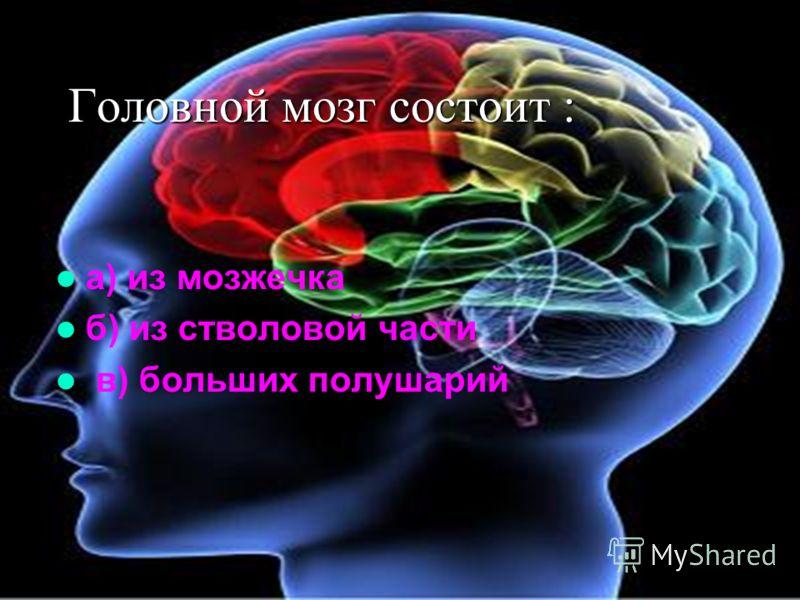 Головной мозг состоит : а) из мозжечка б) из стволовой части в) больших полушарий