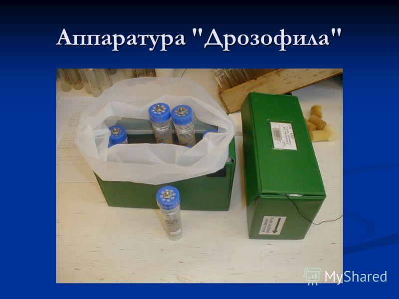 Аппаратура Дрозофила