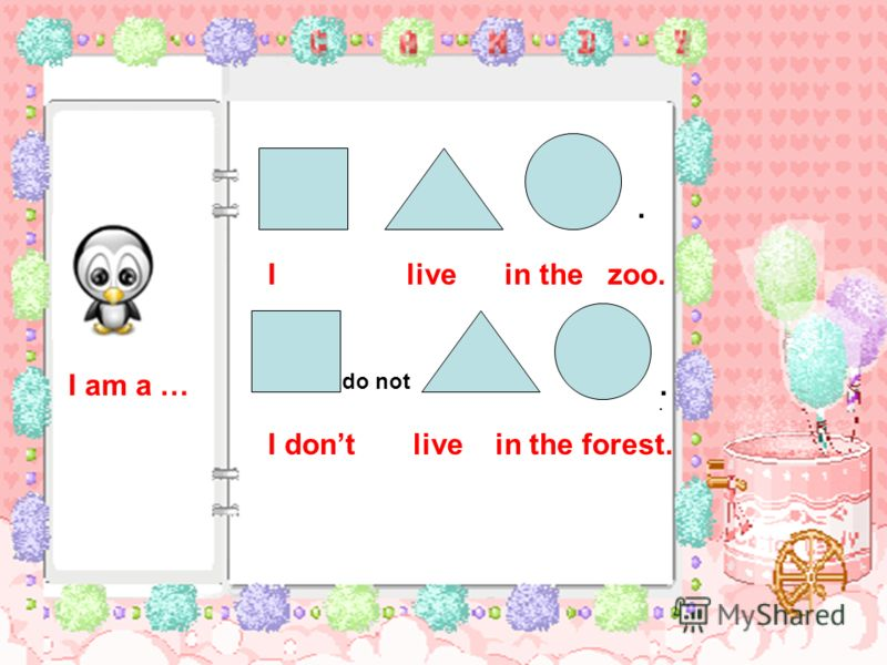 do not I live in the zoo. I dont live in the forest. I am a …...