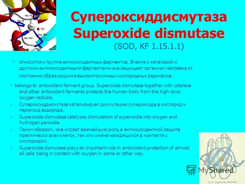 Супероксиддисмутаза Superoxide dismutase ( SOD, КF 1.15.1.1) - относится к группе антиоксидантных ферментов. Вместе с каталазой и другими антиоксидантными ферментами она защищает организм человека от постоянно образующихся высокотоксичных кислородных