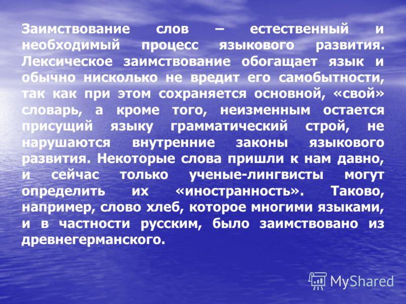Доклад на тему слова русского языка 8043
