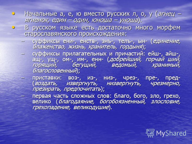 Начальные а, е, ю вместо русских л, о, у (агнец – ягненок, един – один, юноша – уноша). Начальные а, е, ю вместо русских л, о, у (агнец – ягненок, един – один, юноша – уноша). В русском языке есть достаточно много морфем старославянского происхождени