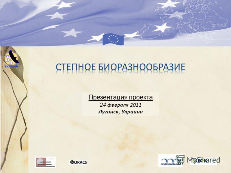 Презентация проекта 24 февраля 2011 Луганск, Украина