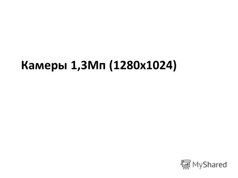 Камеры 1,3Мп (1280х1024)