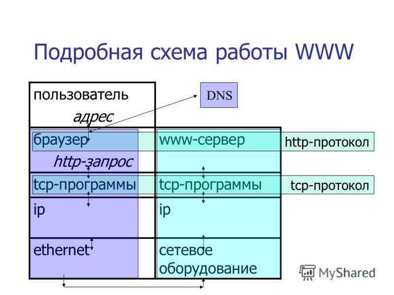 Подробная схема работы WWW пользователь адрес браузер http-запрос www-сервер tcp-программы ip ip ethernetсетевое оборудование http-протокол tcp-протокол DNS