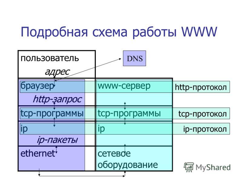 Подробная схема работы WWW пользователь адрес браузер http-запрос www-сервер tcp-программы ip ip-пакеты ip ethernetсетевое оборудование http-протокол tcp-протокол ip-протокол DNS