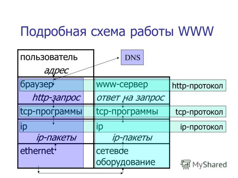 Подробная схема работы WWW пользователь адрес браузер http-запрос www-сервер ответ на запрос tcp-программы ip ip-пакеты ip ip-пакеты ethernetсетевое оборудование ip-протокол DNS http-протокол tcp-протокол