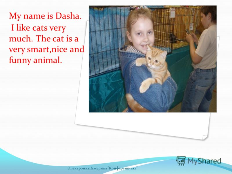 My name is Dasha. I like cats very much. The cat is a very smart,nice and funny animal. Электронный журнал Конференц-зал