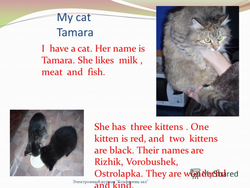My cat Tamara I have a cat. Her name is Tamara. She likes milk, meat and fish. She has three kittens. One kitten is red, and two kittens are black. Their names are Rizhik, Vorobushek, Ostrolapka. They are wonderful and kind. Электронный журнал
