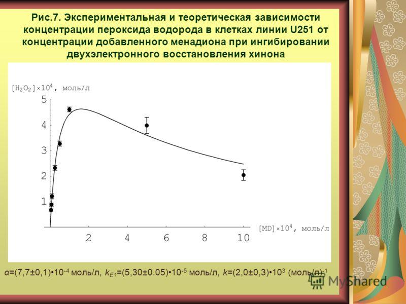 Рис.7. Экспериментальная и теоретическая зависимости концентрации пероксида водорода в клетках линии U251 от концентрации добавленного менадиона при ингибировании двухэлектронного восстановления хинона α=(7,7±0,1)10 -4 моль/л, k E1 =(5,30±0.05)10 -5