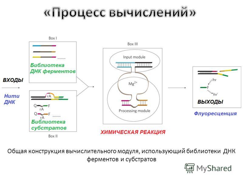Общая конструкция вычислительного модуля, использующий библиотеки ДНК ферментов и субстратов