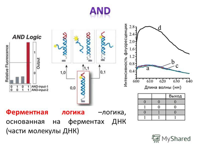 Ферментная логика –логика, основанная на ферментах ДНК (части молекулы ДНК)