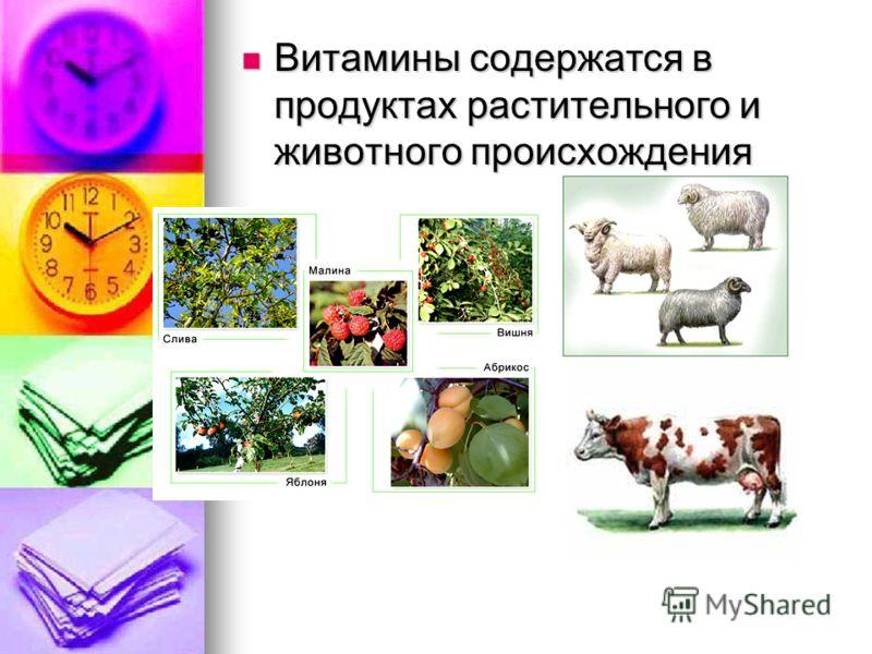 Витамины содержатся в продуктах растительного и животного происхождения Витамины содержатся в продуктах растительного и животного происхождения