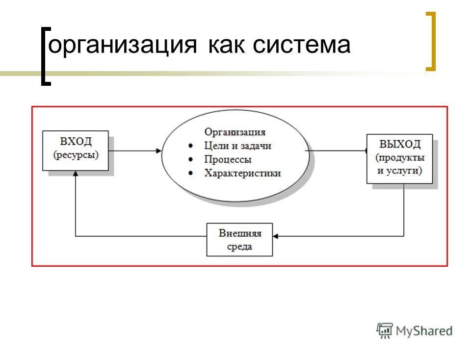 организация как система