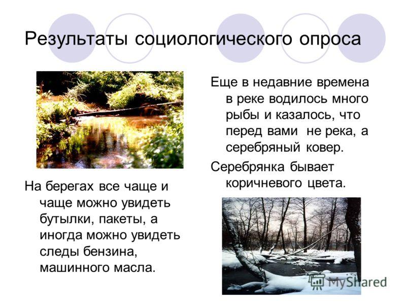 Результаты социологического опроса Еще в недавние времена в реке водилось много рыбы и казалось, что перед вами не река, а серебряный ковер. Серебрянка бывает коричневого цвета. На берегах все чаще и чаще можно увидеть бутылки, пакеты, а иногда можно