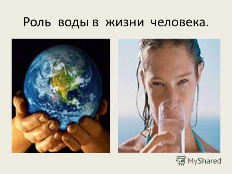 Роль воды в жизни человека.