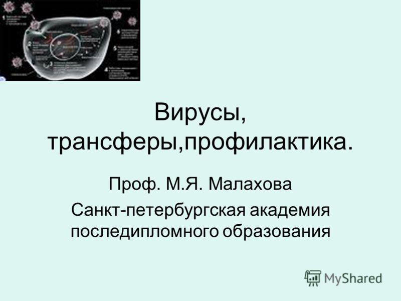 Вирусы, трансферы,профилактика. Проф. М.Я. Малахова Санкт-петербургская академия последипломного образования
