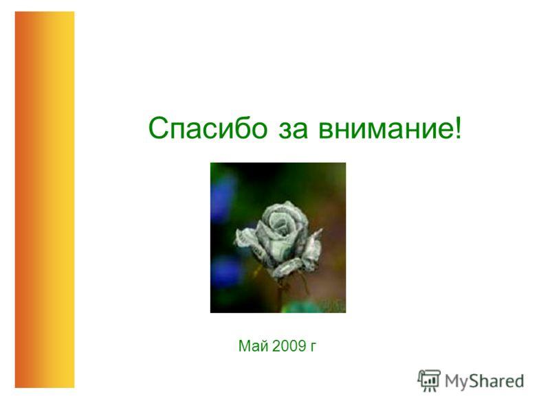 Спасибо за внимание! Май 2009 г