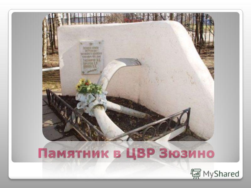 Памятник в ЦВР Зюзино